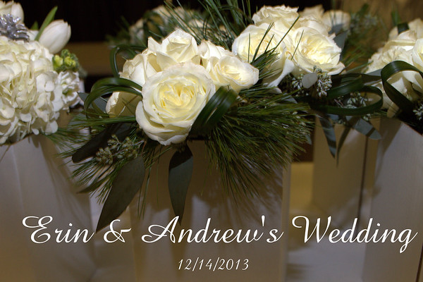 Erin & Andrew's Wedding