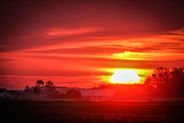 The Bright Morning Sun On The Farm In Champaign County Ohio 8-23-2015